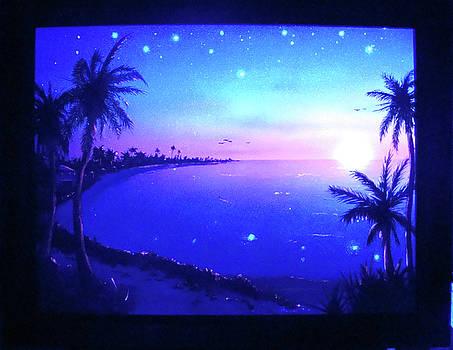 Florida Magic Sunrise by Thomas Lenz