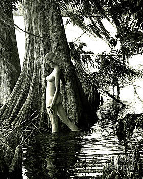 Florida Nude by Jimm Roberts
