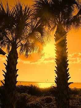 Ian  MacDonald - Florida Orange