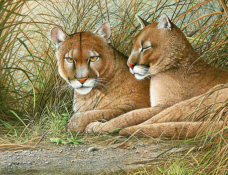 Florida Siblings by Mike Brown