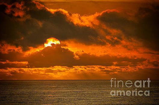 Dave Bosse - Florida Sunrise