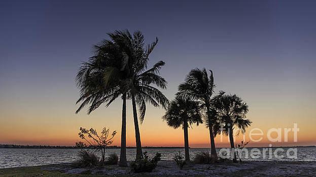 Edward Fielding - Florida Sunset