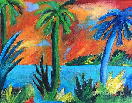 Florida Sunset by Elizabeth Fontaine-Barr