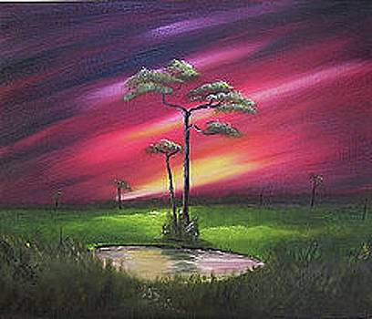 Florida Sunset by John Johnson
