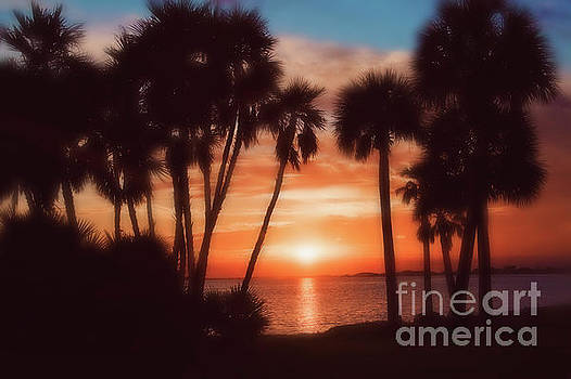 Florida- Sunset Memories by Janie Johnson