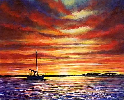Florida Sunset On The Peace River by Larry Palmer