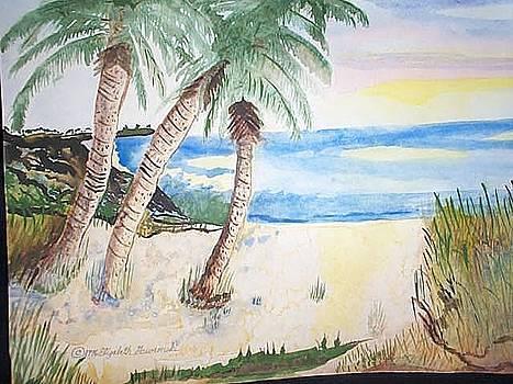 Florida Sunshine by Elizabeth A Gawronski