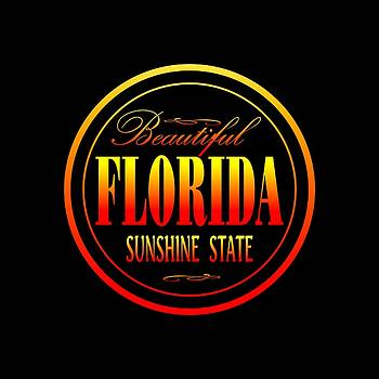 Art America Gallery Peter Potter - Florida Sunshine State Design