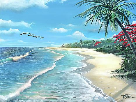 Florida Treasure by James R Hahn