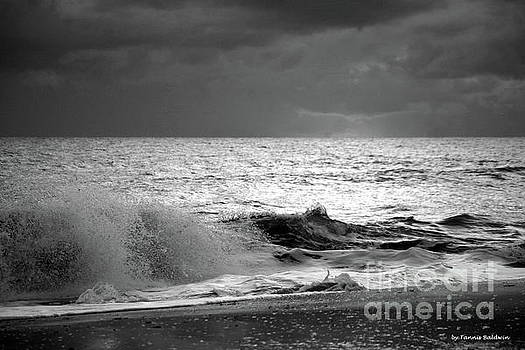 Florida Wave BW by Tannis Baldwin
