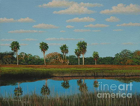 Florida Wetlands by Michael Nowak
