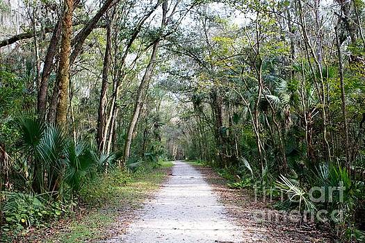 Danielle Groenen - Florida Wilderness Walkway
