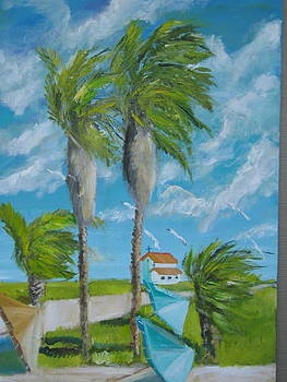 Florida Winds by Terrence  Howell