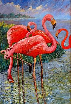 Florida's Free Flamingo's by Charles Munn