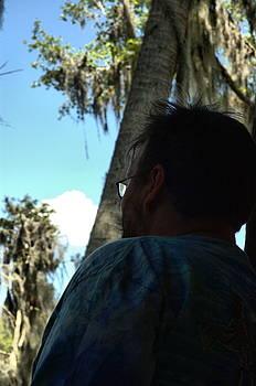 Kathi Shotwell - Floridaydreaming