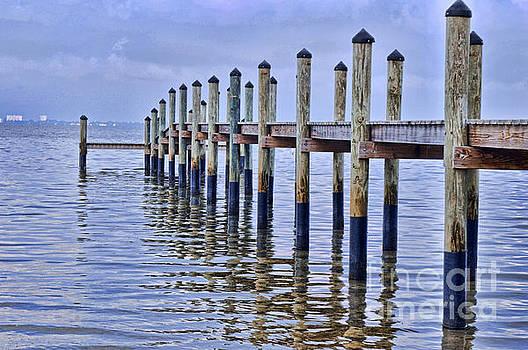 Floridian Pier  by Josephine Cohn