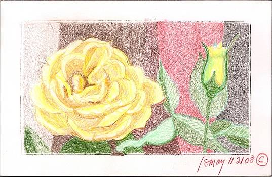 Flower 4 - Yellow Rose and Bud by Rod Ismay