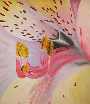 Flower by Agnieszka Bednarz