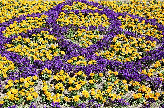 Ramunas Bruzas - Flower Art