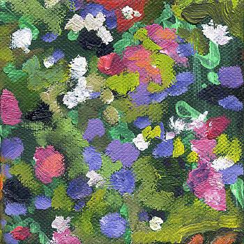 Flower Aster 2 by Kathleen Barnes