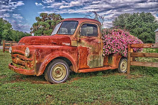 Dodge Flower Bed by Dennis Dugan