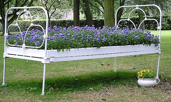 Martina Fagan - Flower Bed