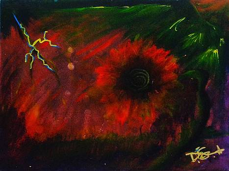 Flower Bomb by Dane Newton
