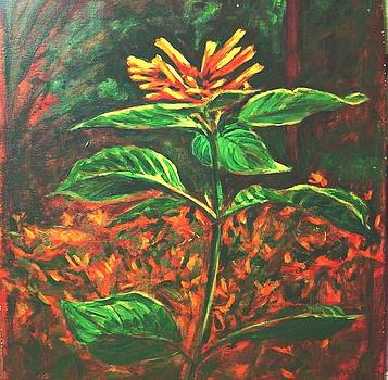 Usha Shantharam - Flower Branch