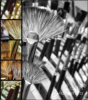 Flower Brushes  by Steven Digman