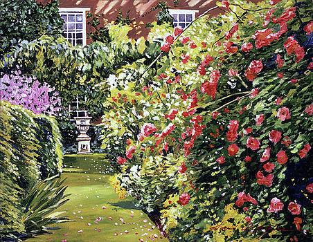 Flower Cascade  by David Lloyd Glover