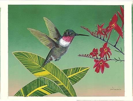 Flower Dance by William Demboski