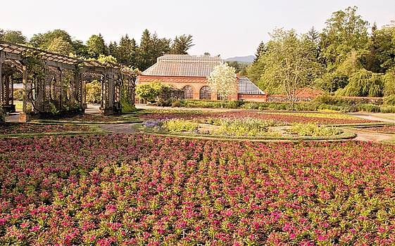 Allen Nice-Webb - Flower Garden