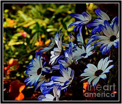 Flower Garden by Leslie Revels