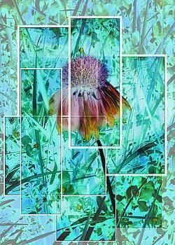 Flower by Gina Cordova