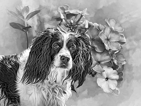 Flower Girl 3 bw by Steve Harrington