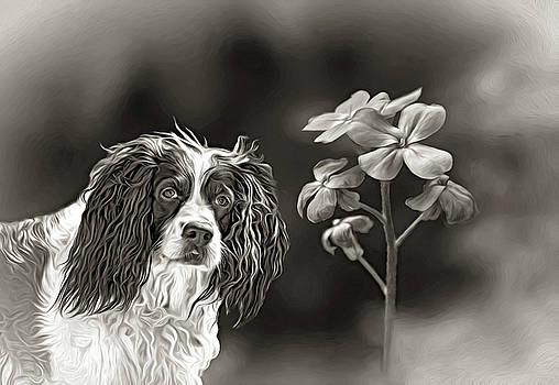 Flower Girl 4 bw by Steve Harrington