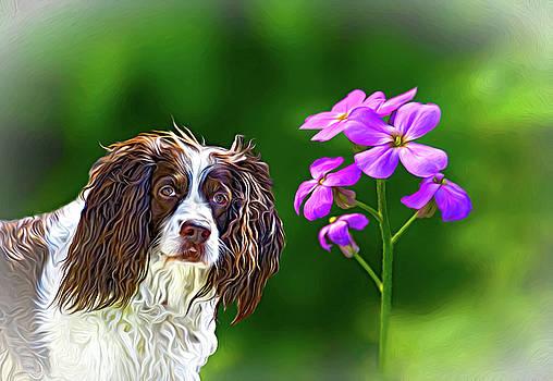 Flower Girl 4 by Steve Harrington