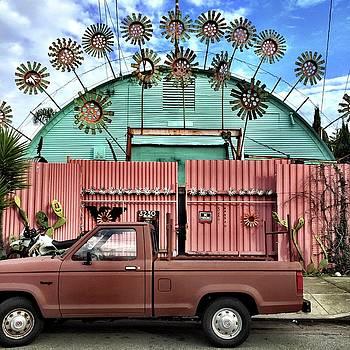 Flower House by Julie Gebhardt