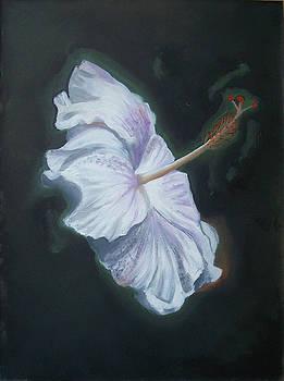Flower by Larisa M