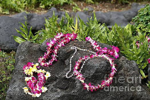 Flower Lei on Lava Rock by Catherine Sherman