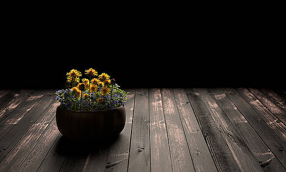Flower Light by Perry Harmon
