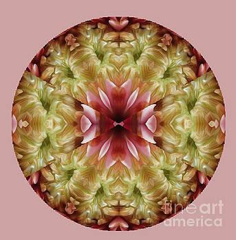 Flower Mandala by Carol Eliassen
