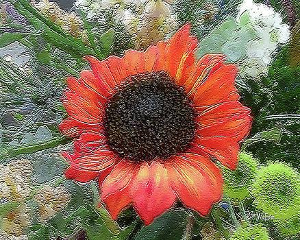 Flower Mix #073 by Barbara Tristan