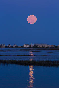 Flower Moon Rising Over Murrells Inlet by Bill Barber