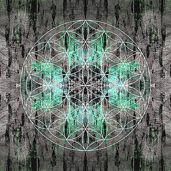 Flower  Of Life Teal Grey by Filippo B