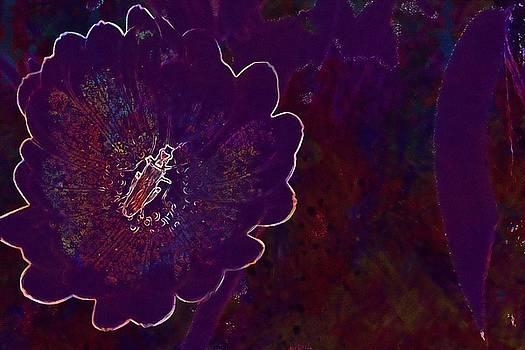 Flower Orange Insect Green  by PixBreak Art