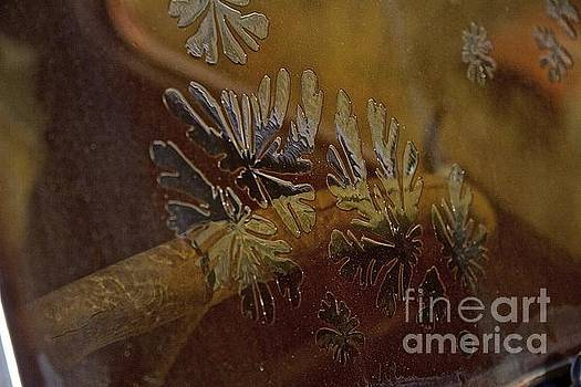 Flower pattern by Anthony Jones