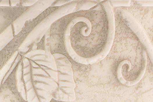 Sandra Foster - Flower Pot Detail Macro