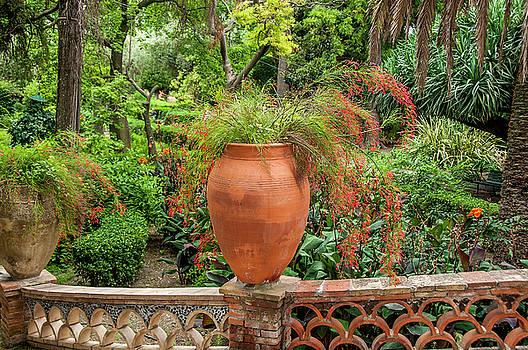 Flower pot taormina Sicily by Xavier Cardell
