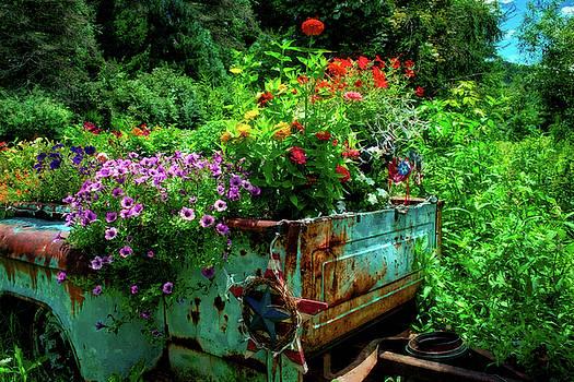 Flower Power by Daniel Gundlach